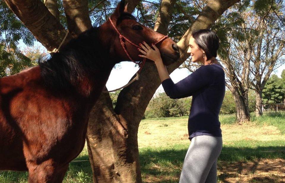 cavalo-e1435329199313
