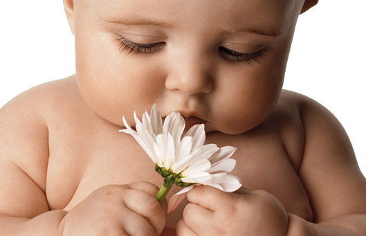 baby-flower2